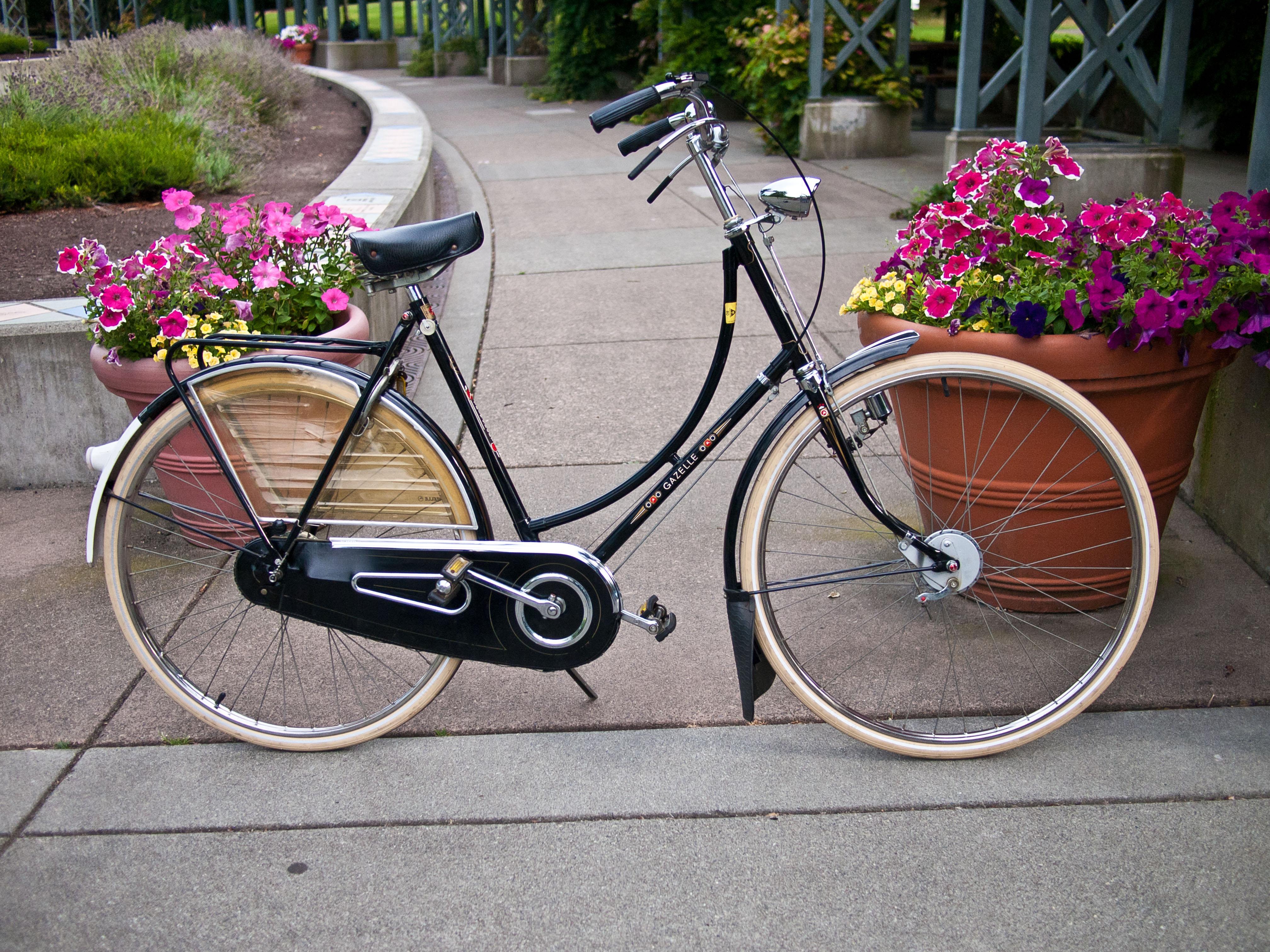 Vintage Touring Bike Restoration
